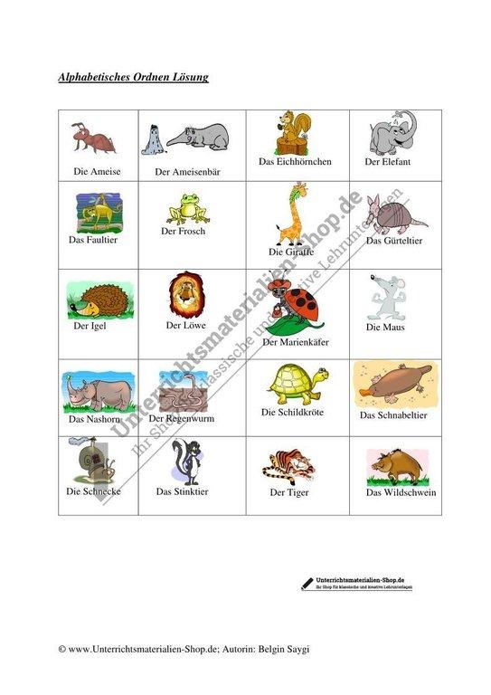alphabetisches ordnen von tieren unterrichtsmaterialien shop. Black Bedroom Furniture Sets. Home Design Ideas